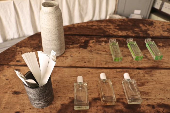 karolinedelaconcha-centrale-parfym